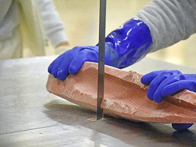 JapoFish - Feb17